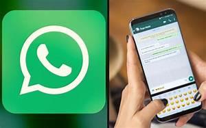 whatsapp-ine-elecciones-la-voz-de-queretaro